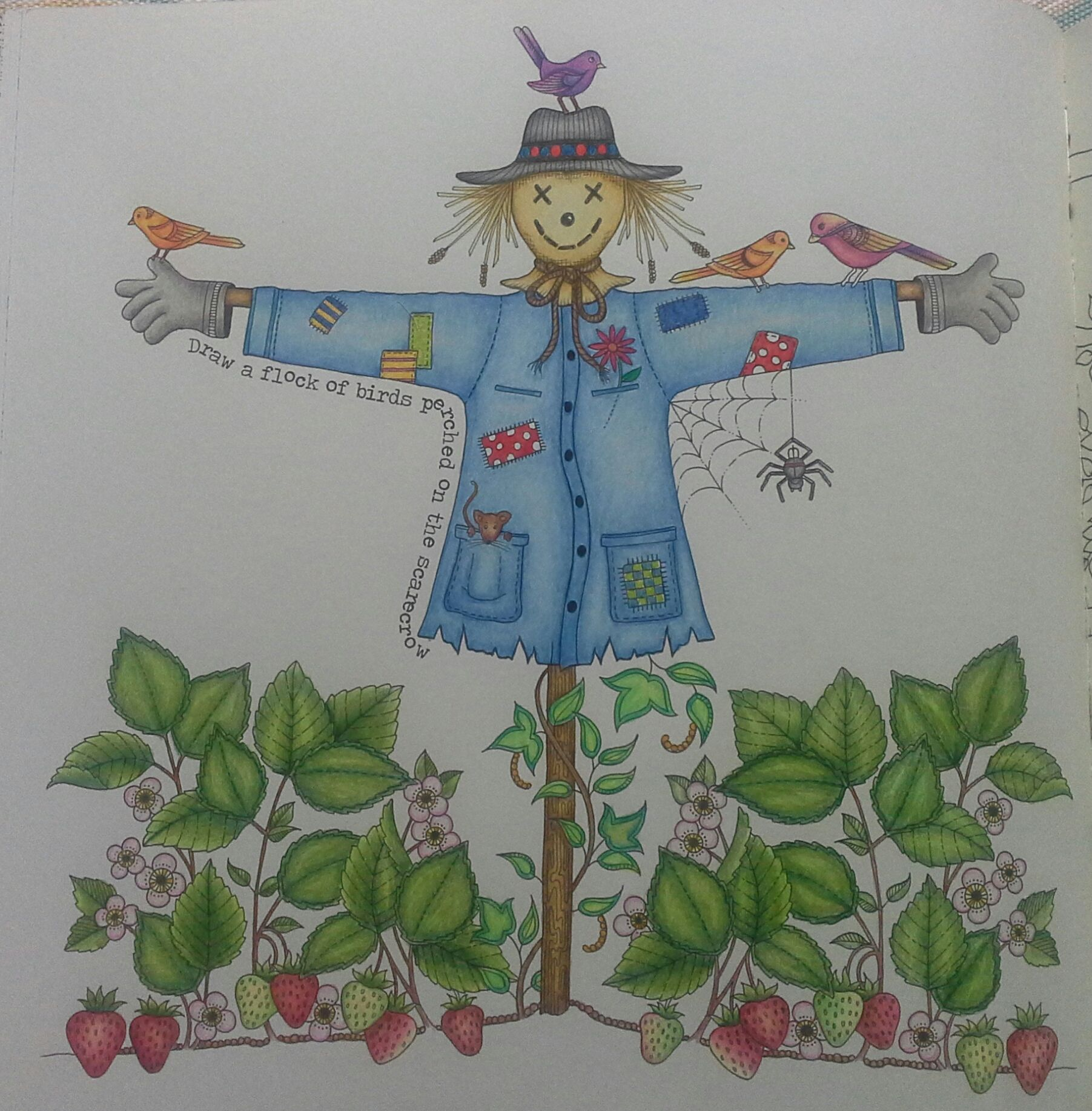 Scarecrow From Secret Garden Coloured With Polychromos Staedtler Triplus Fineliner And Gel Pen Coloring