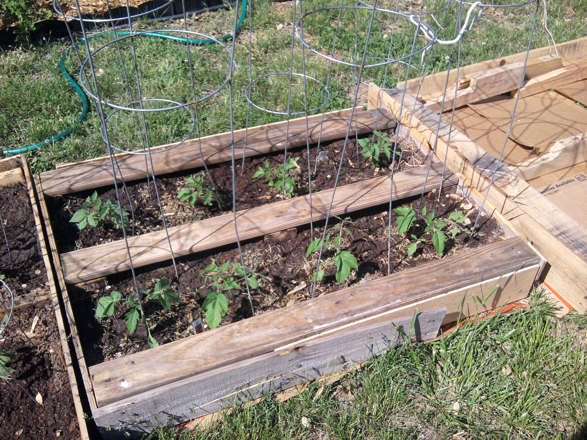 Superieur Pallet Raised Bed Vegetables | This Pallet Was Smaller, So I Have Only  Tomatoes In This One. And You .