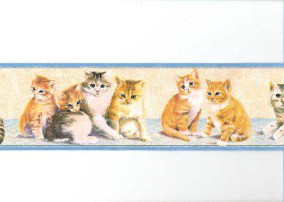 wallpaper border, cats kittens border kittens border 5