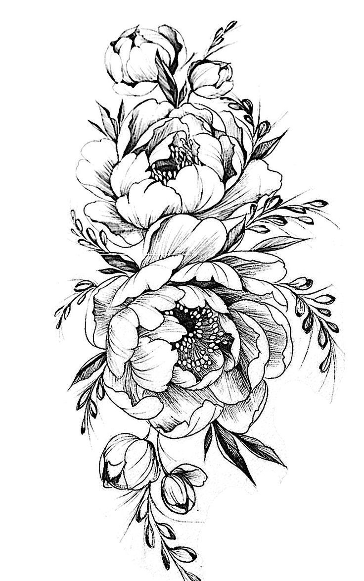 Tattoo Outlines Flowers Black And White: Pattern Flower Drawing With Colour Best 25+ Flower Tattoo
