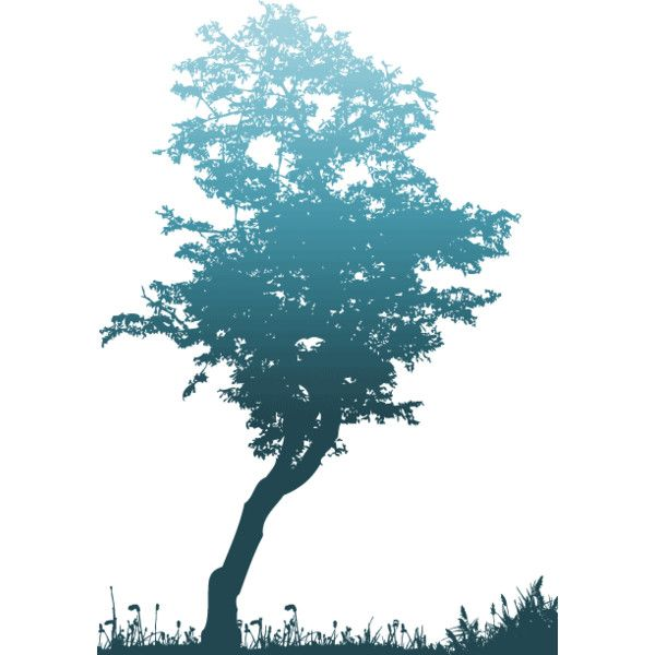 the tree ❤ liked on Polyvore featuring home, home decor, backgrounds, tree, blue, flowers, nature and blue home decor