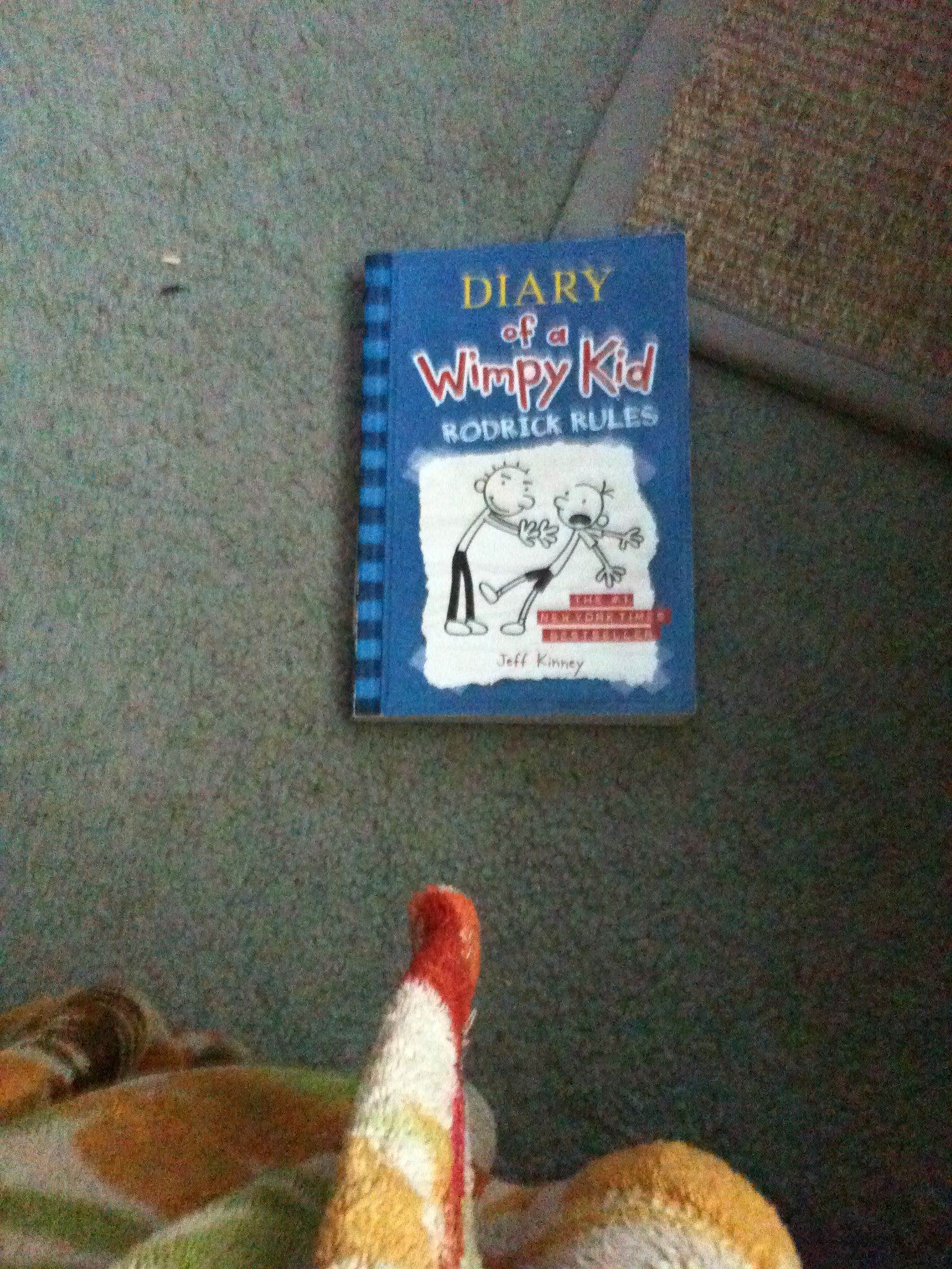 Diary of a wimpy kid 2 . | Wimpy kid, Christmas ornaments ...
