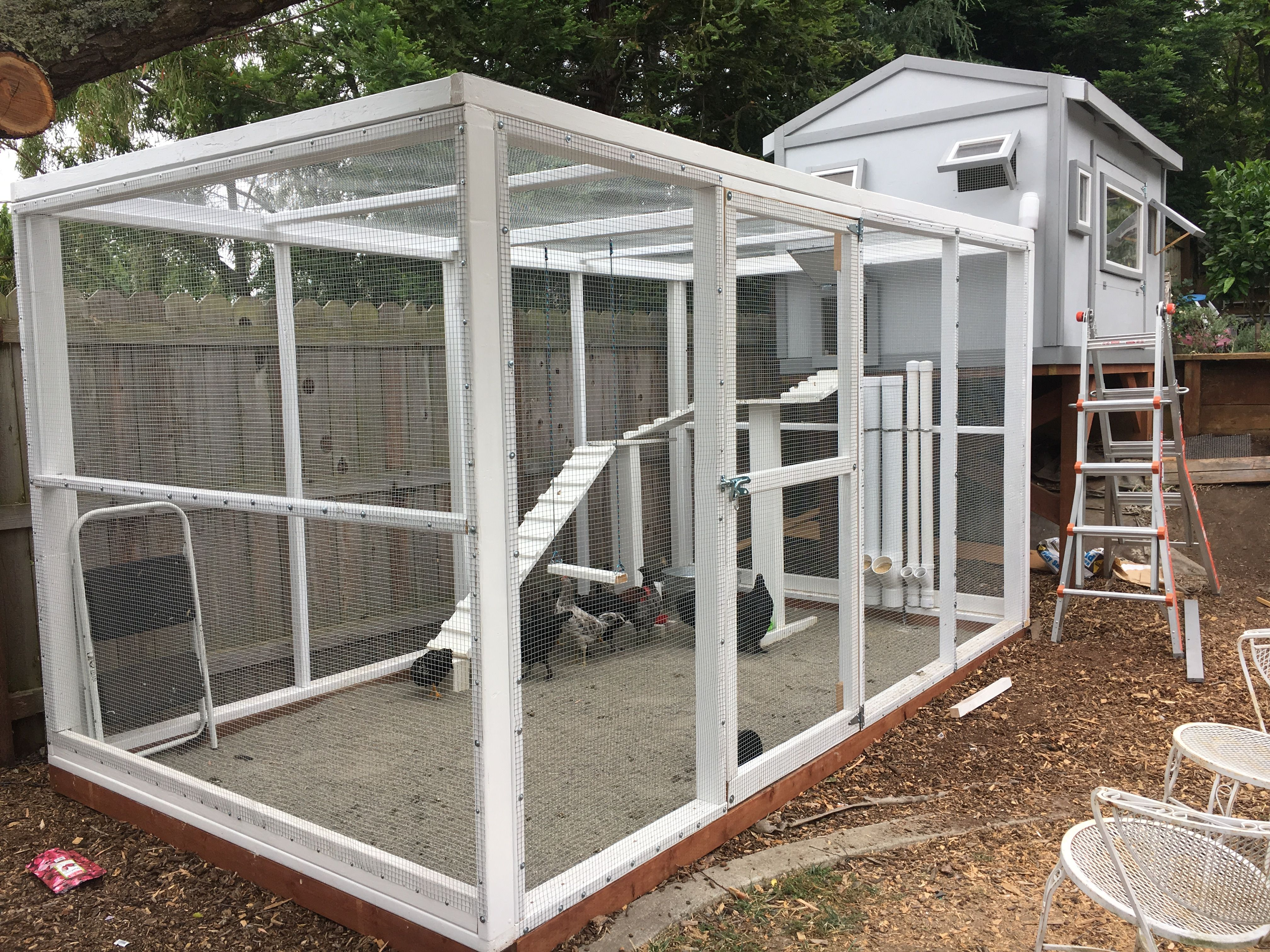The chicken penthouse s vincent 2017 fully enclosed 1 2 for Enclosed chicken run plans