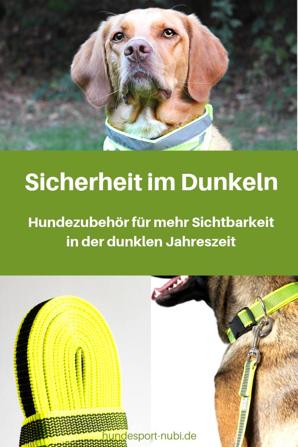 Schütze deinen Hund in der dunklen Jahreszeit und