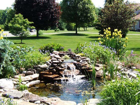 Ponds & Waterfalls | Mattia Landscaping