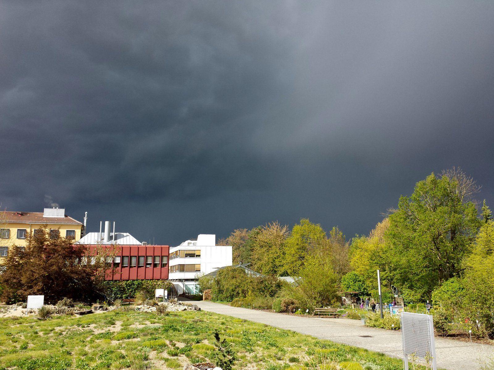Luxury Unter Dunklen Wolken Botanischer Garten in W rzburg