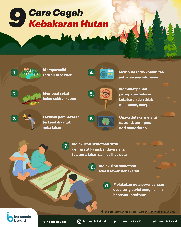 9 Cara Cegah Kebakaran Hutan Indonesia Baik Infografis