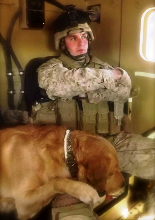 The real THOR: Military Dog Picture of the Week. (May 23th, 2012) Welcome Home Marines!
