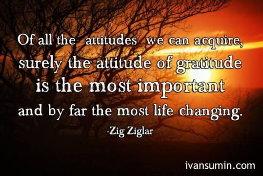 """Of all the attitudes we can acquire, surely the attitude of gratitude is the most important and by far the most life changing."" - Zig Ziglar"