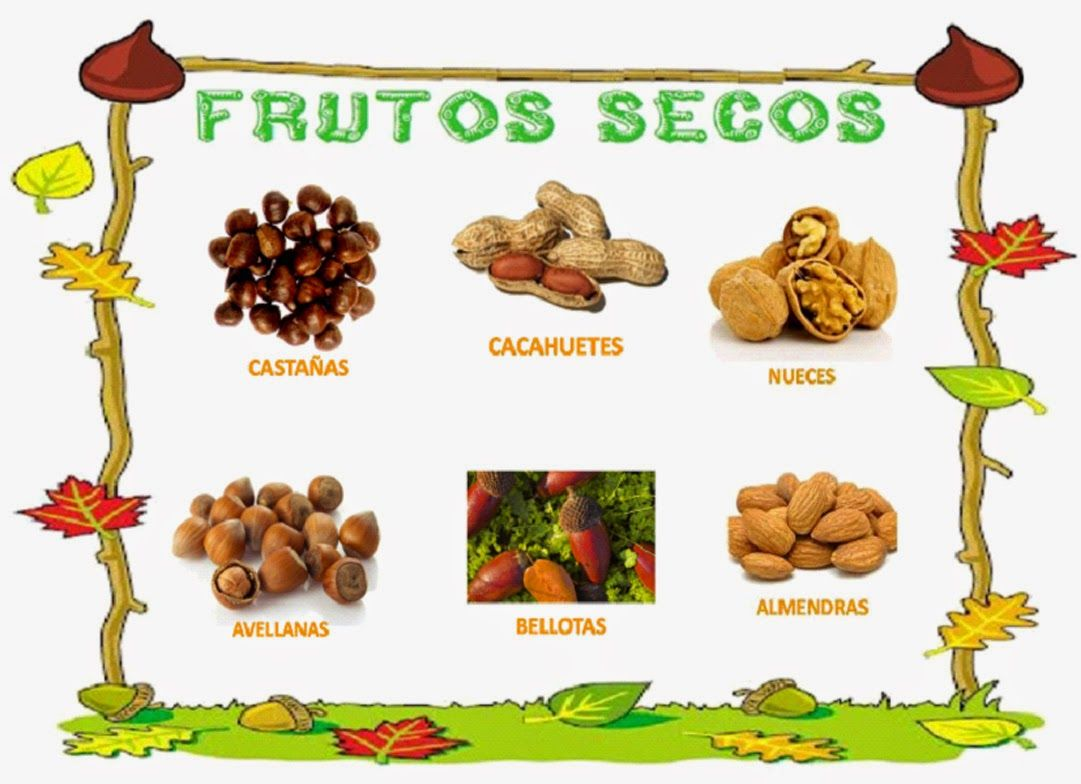 El Arbol De Los Frutos Para NiÑos: Disfraz De Moniato Erizo Manualidad Cn Frutos Secos T