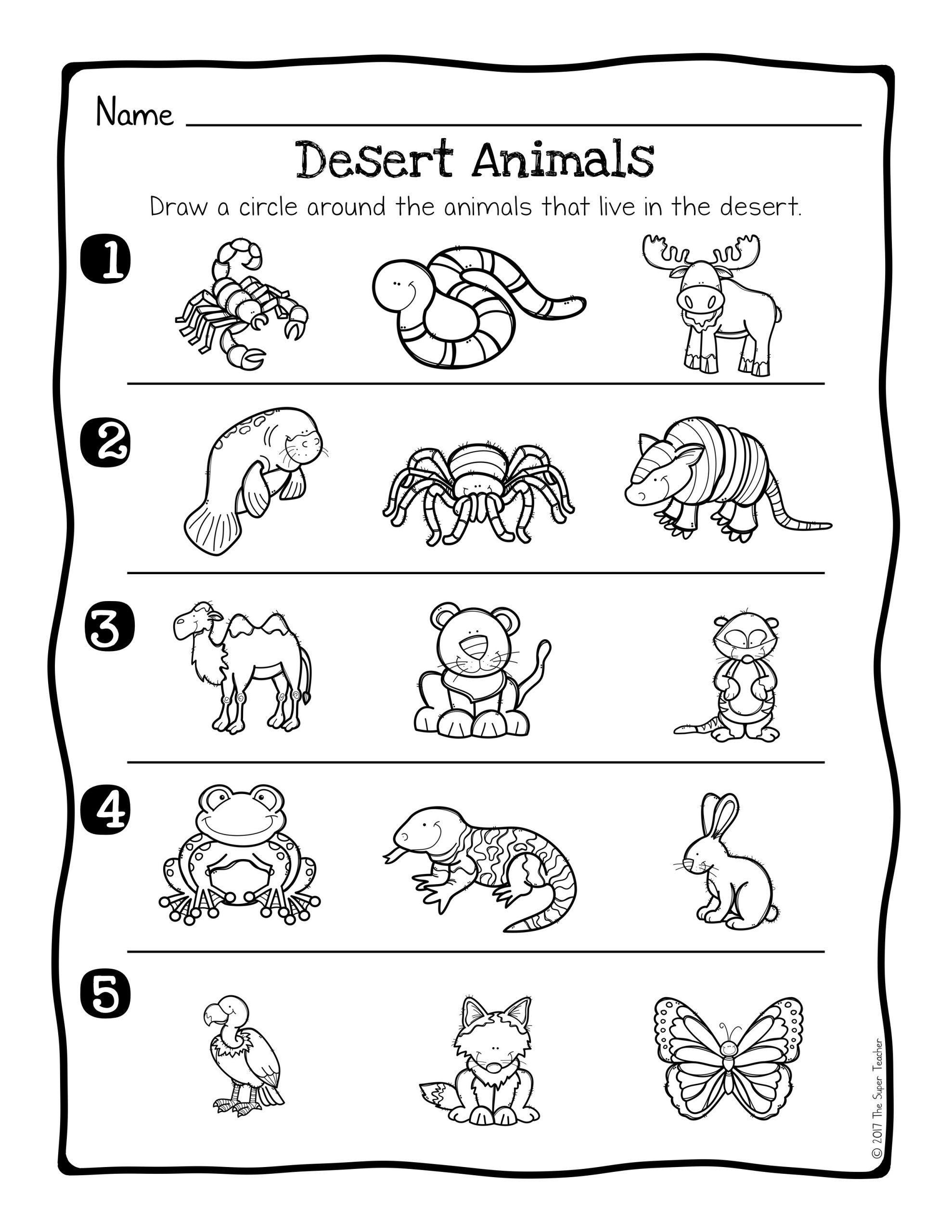 Animal Habitat Worksheets For Kindergarten Animal Habitats