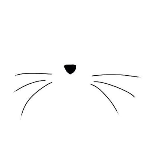 Cat Whiskers Cat Tattoo Cat Drawing Cat Art
