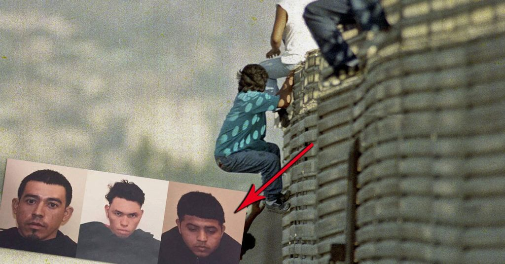 Image result for illegals ms-13 gang