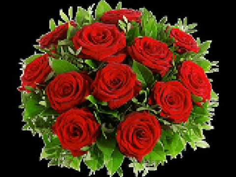 semino rossi rot sind die rosen musik deutsch. Black Bedroom Furniture Sets. Home Design Ideas