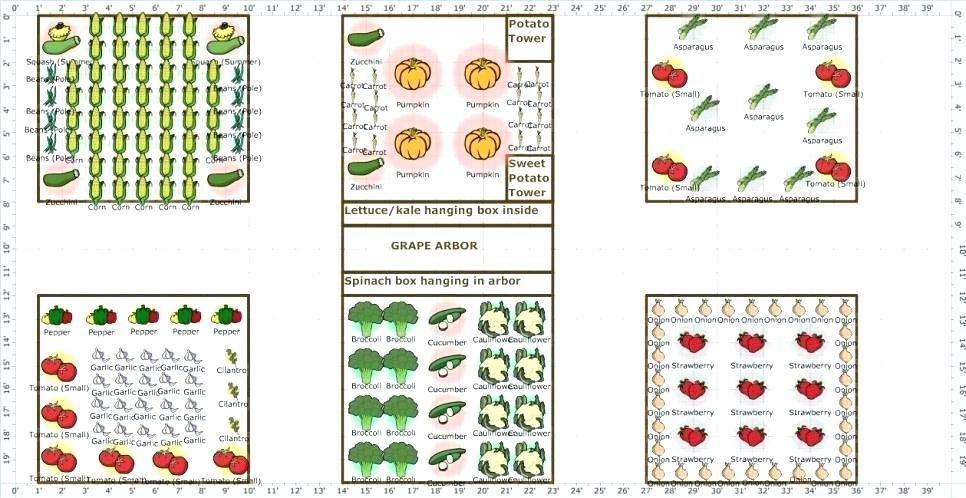 Garden Layout Ideas Garden Layout Ideas King Homes Garden Design Vegetable Garden Layout Ideas Garden Layout Vegetable Vegetable Garden Planning Garden Layout