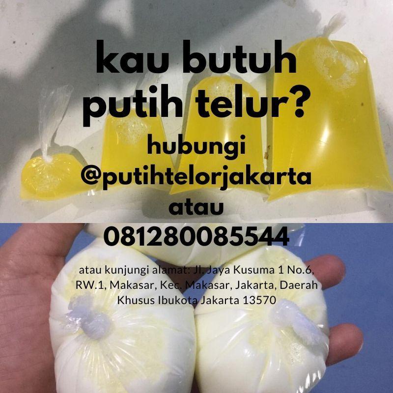 WA +62 813 8008 5544, Jual Putih Telor Kebutuhan Industri Kue Bekasi#jualPutihTelorUntukBikinKuePalm...