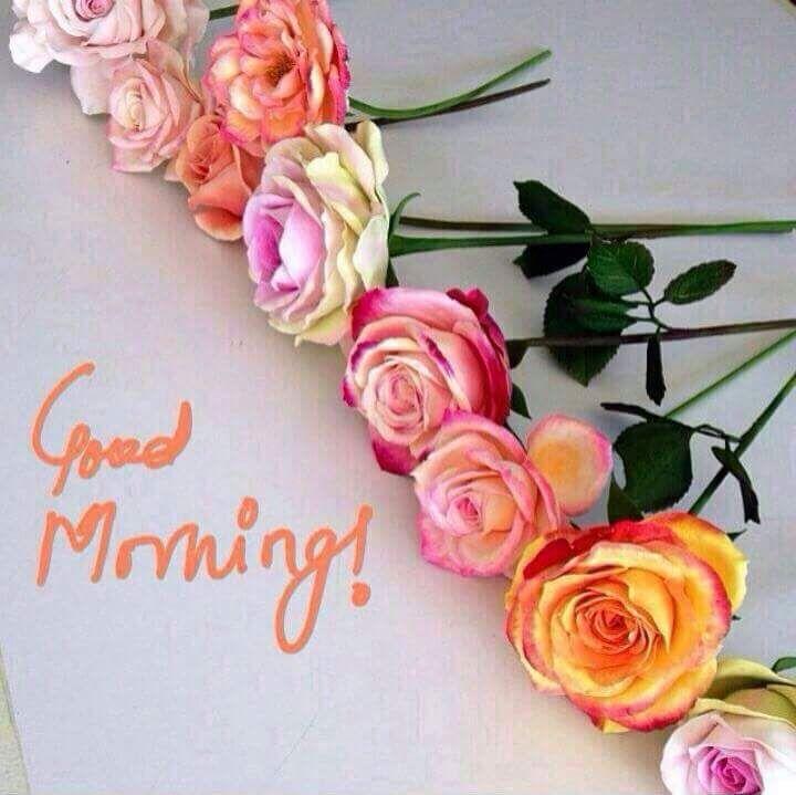 Good Morning - Whatsapp Gupshup   Days of the Week Greetings ...