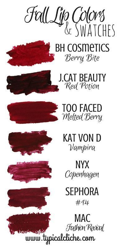 Photo of Fall Lip Colors and Swatches; Fall Berry Lip Colors guide- High end and Drugstor…