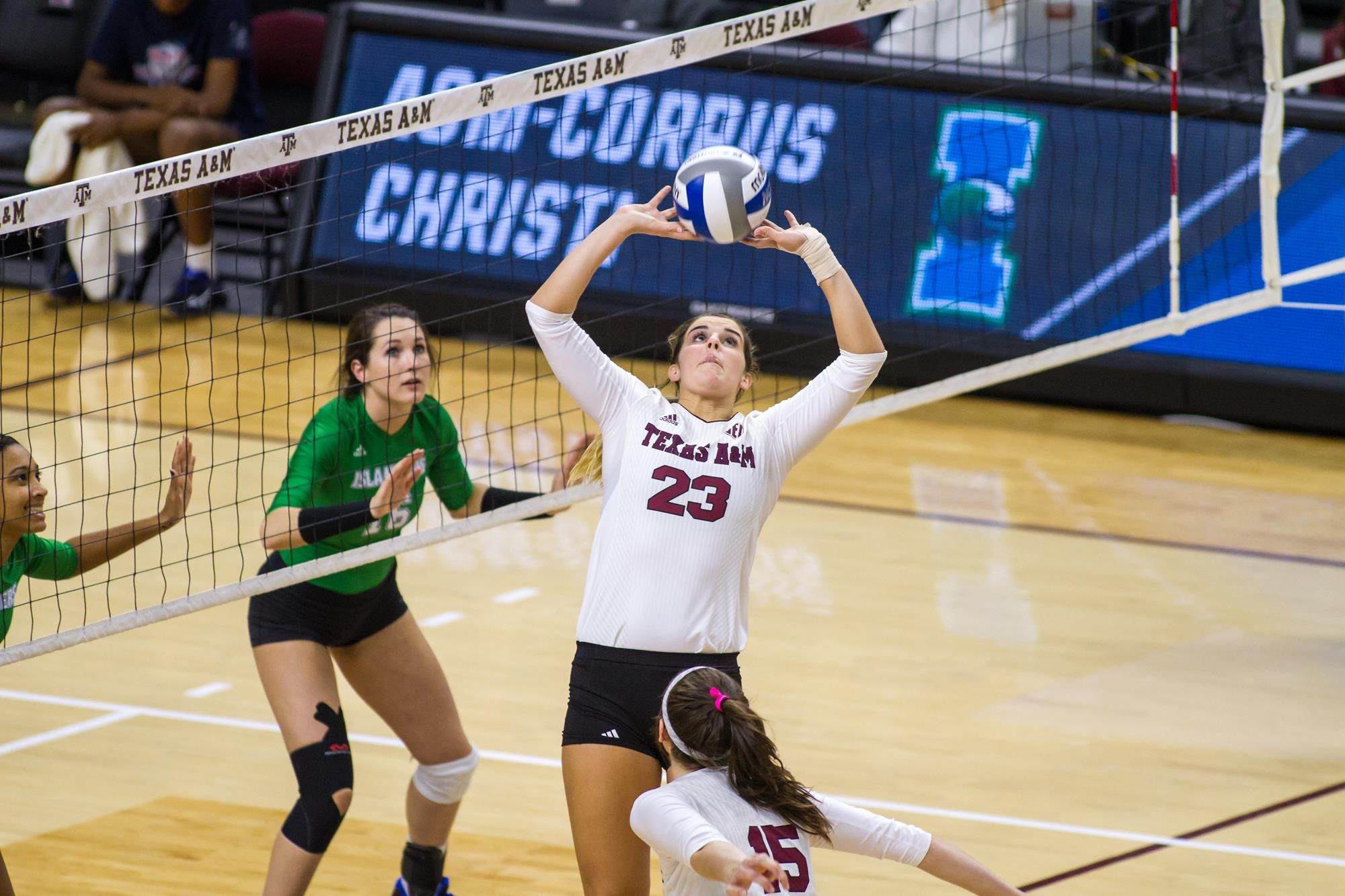 College Station Texas Texas A M Junior Setter Stephanie Aiple Pronounced Volleyball News Texas Volleyball Positions