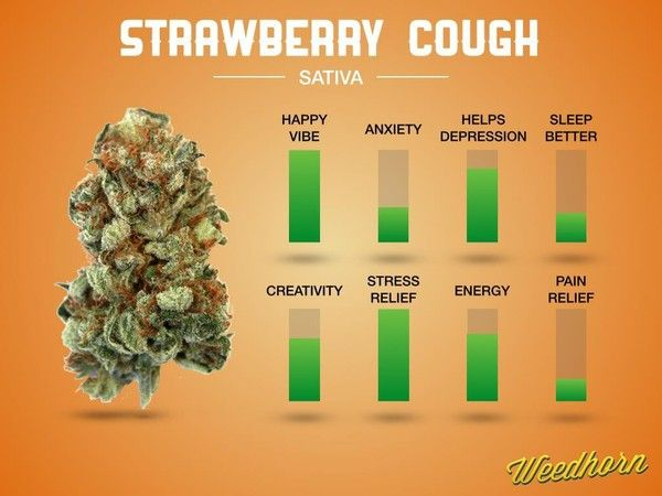 Strain Review: Strawberry Cough   Strain reviews