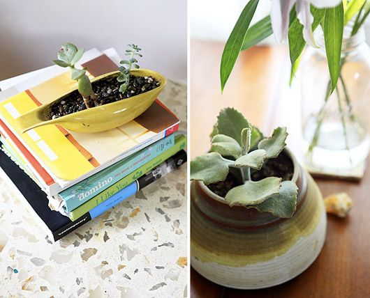 Ceramic plant holders from Home Tours on sfgirlbybay
