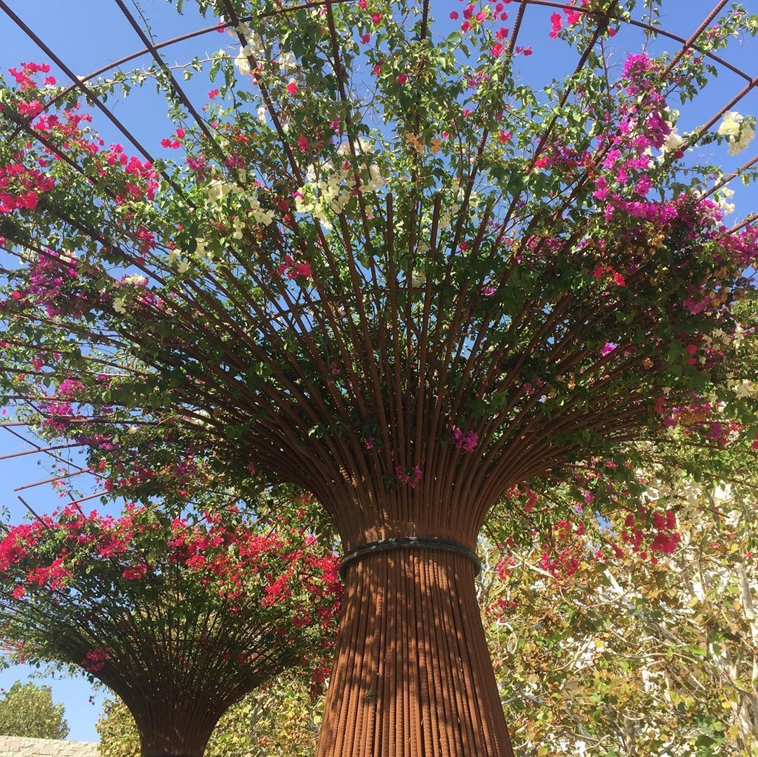 1,303 Likes, 11 Comments - Garden Design Magazine ...
