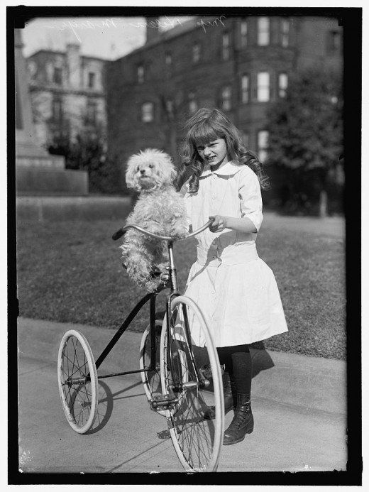 1911 a girl and her dog and tricycle