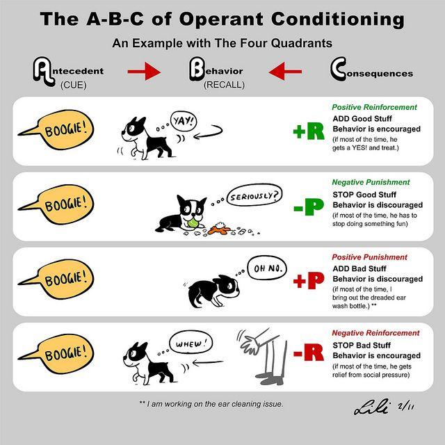 Abc 4 Quadrants Operant Conditioning Flickr Photo Sharing