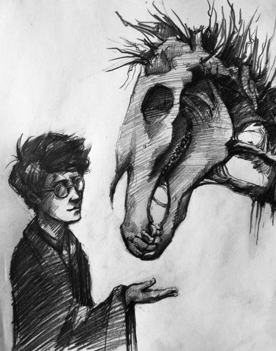 Scrawlsinthesand Hogwarts Wappen Zeichnungen Hogwarts