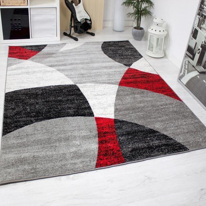 Magnifique Tapis De Salon Rouge Salon Gris Contemporary Rug Home Decor