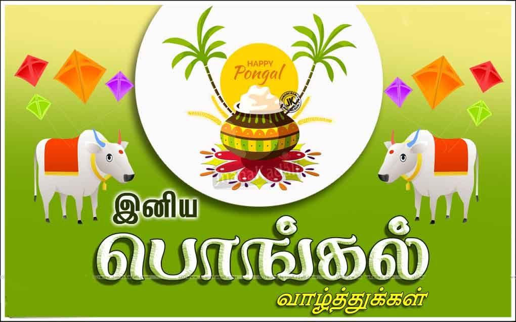 Happy pongal 2019 happy pongal happy pongal wishes