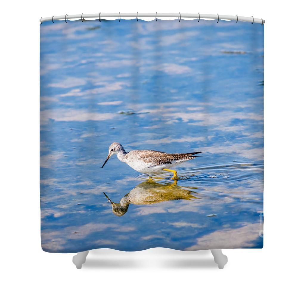 Yellowlegs Shower Curtain By Debra