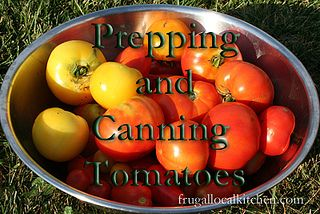 prepping and canning tomatoes {this'll come in handy when the garden overflows....}