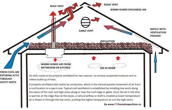 Pros Cons Of Atlas Shingles Costs Unbiased Atlas Roofing Reviews Attic Ventilation Ridge Vent Ventilation