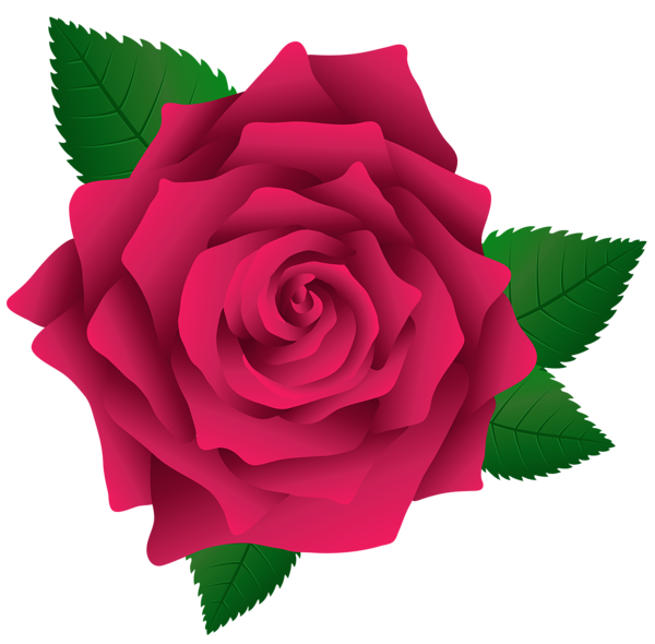Pink Rose Png Image Clipart Red Rose Png Pink Rose Png Flower Phone Wallpaper
