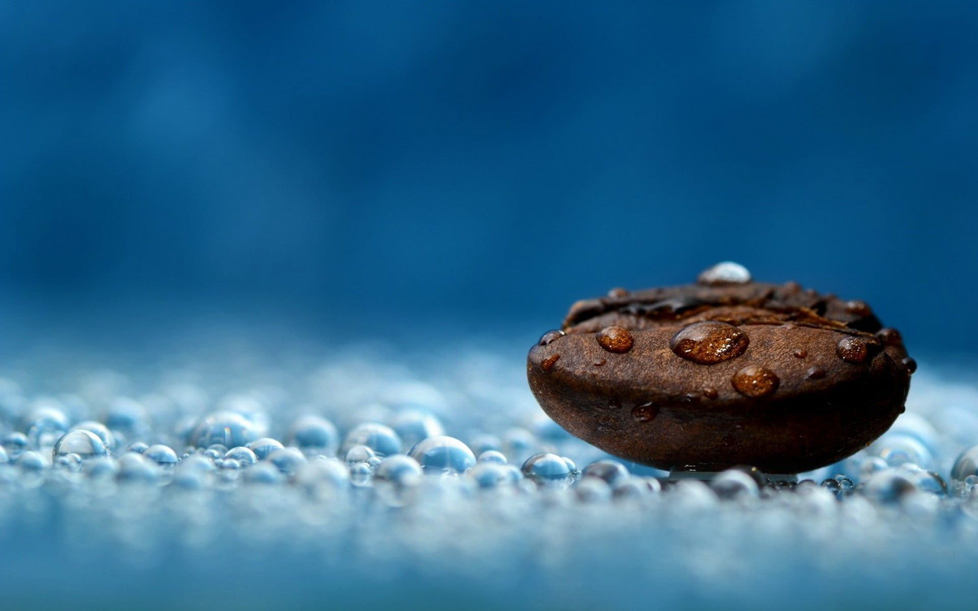 Coffee Bean Macro Depth Of Field Coffee Beans Water Drops Blue Photography Coffee Relaxing 1080p Wallpaper Hdwallpaper Coffee Beans Food Food Wallpaper Wallpaper coffee beans coffee ice hand