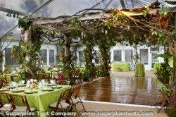 a dance floor covered in vines? Pergola lighting