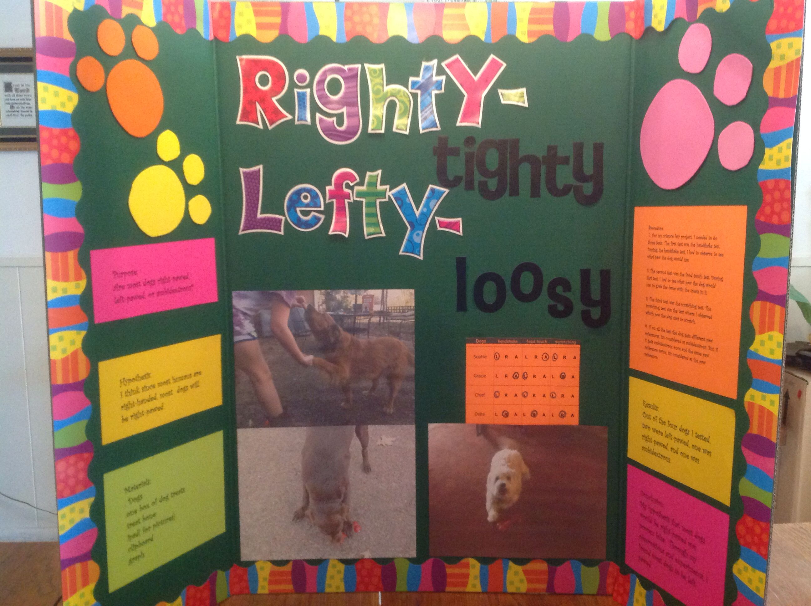 5th grade science fair project. Is a dog right-pawed, left-pawed ...