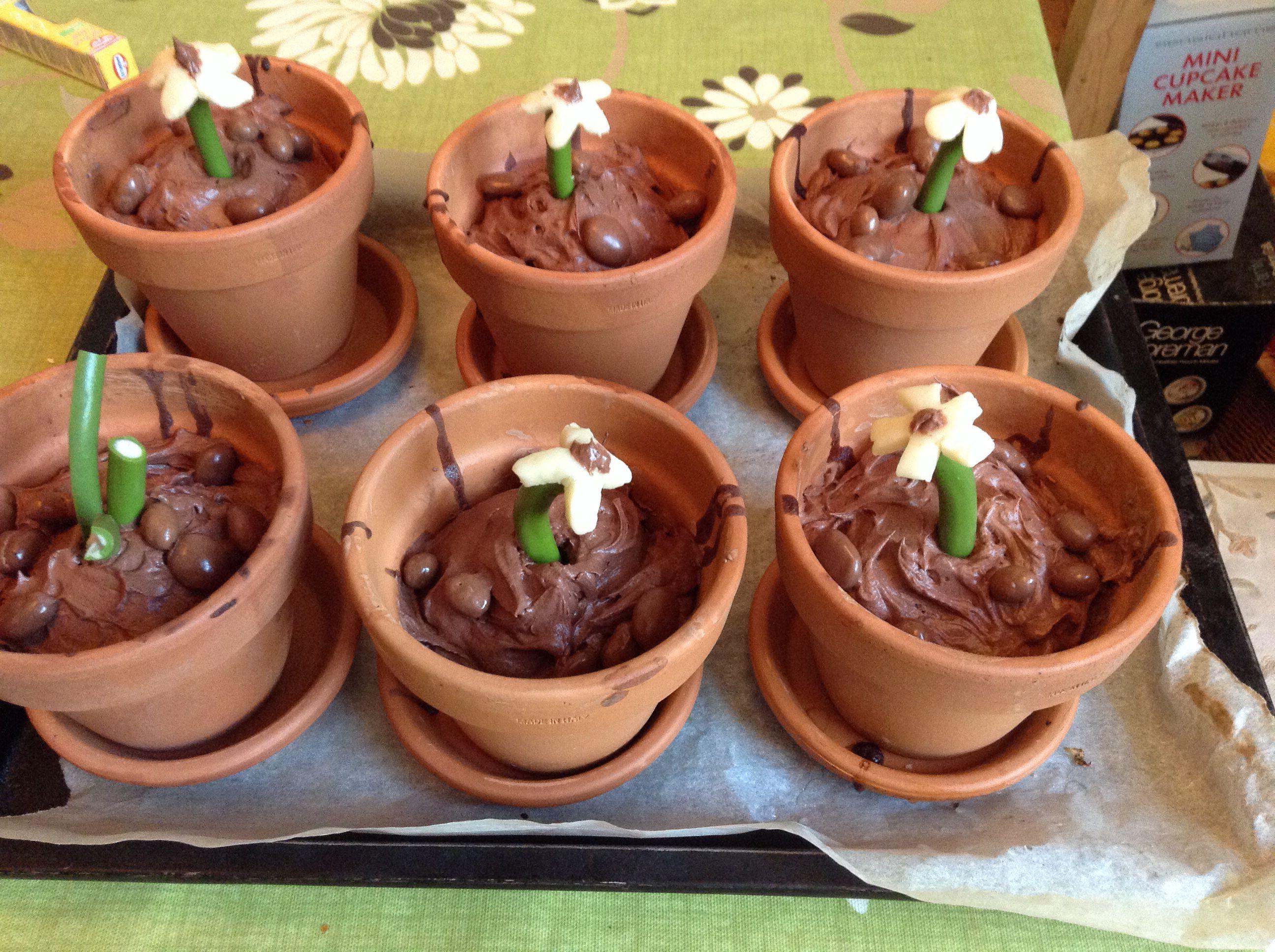 Chocolate flower pot cakes