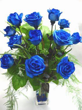 Images of blue items blue rose florist unique flowers for Blue long stem roses