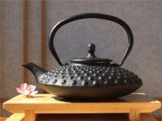 Japanese style Cast Iron black tea pot