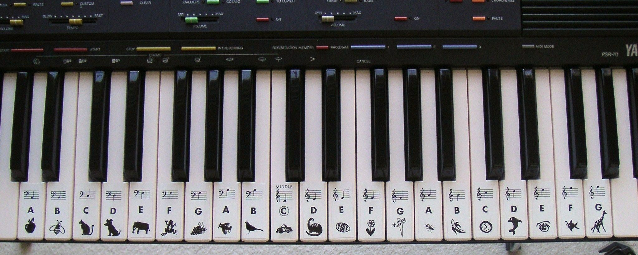 Grand Piano Keys Notes Details About Grand Staff 2 Piano Key Finder Keyboard Stickers Decal Piano Piano Keys And Notes Keyboard Stickers