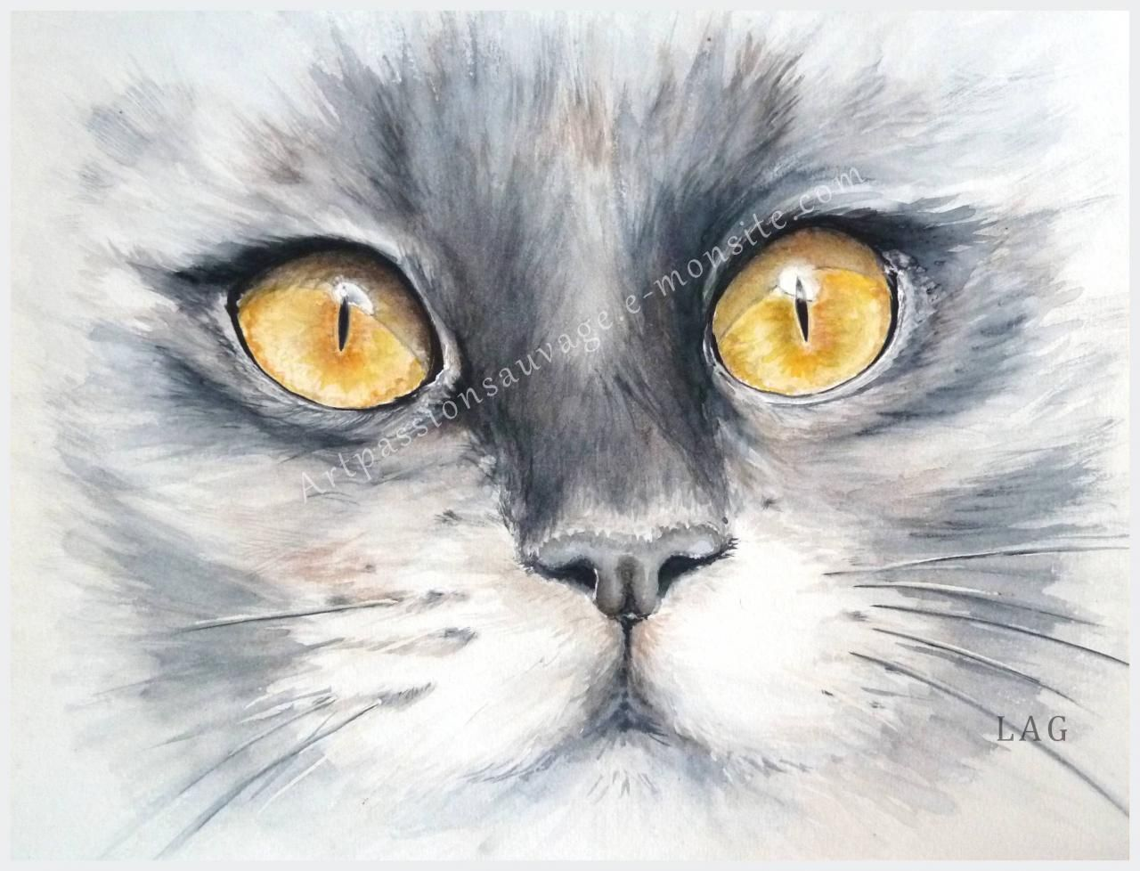 Regard De Chat Gatos Pintados Portrait Au Crayon Aquarelle