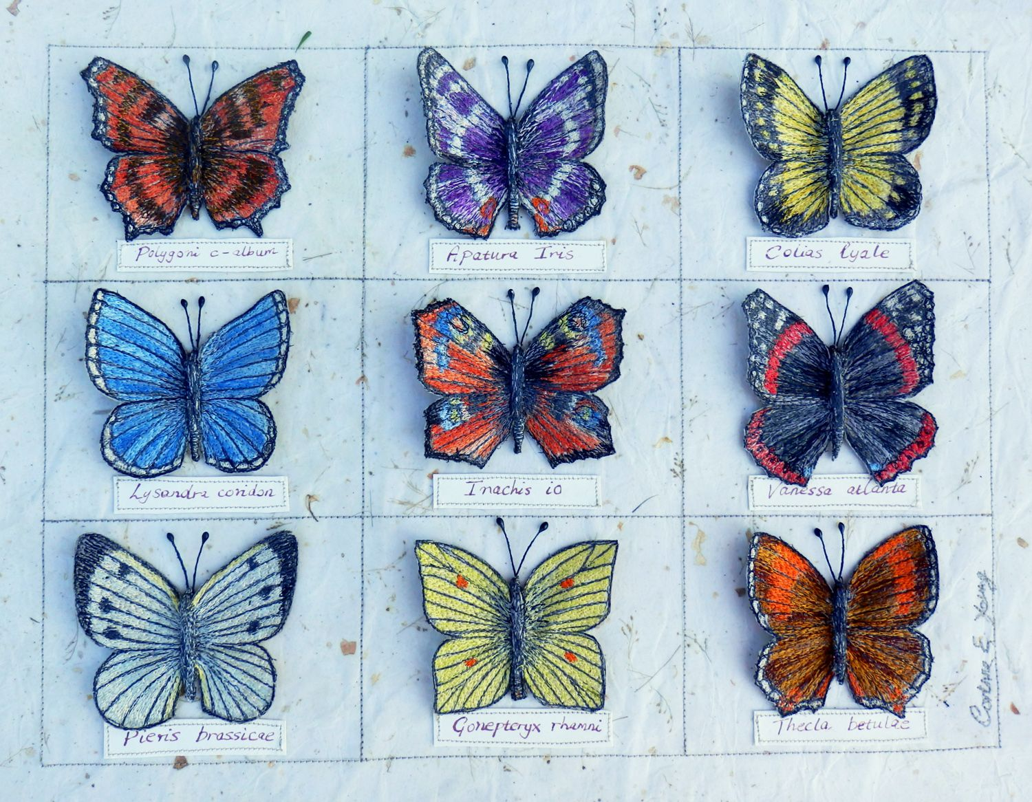 Textile Art - 3d Embroidered Assemblage 'butterfly