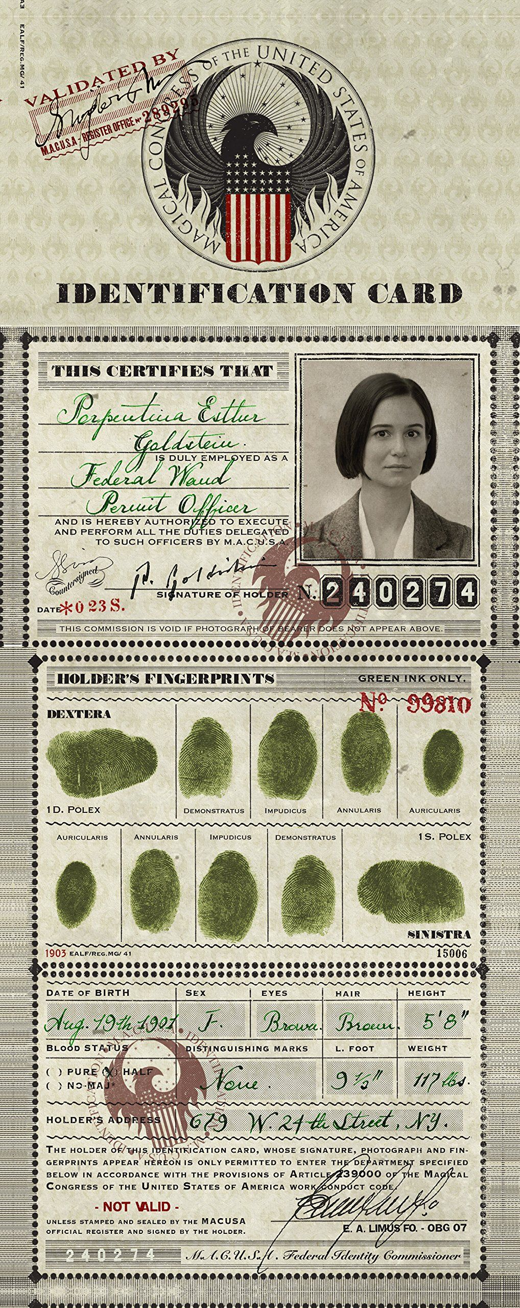 Porpentina Goldstein 39 S Macusa Identification Card Was An Official Identification Document Tina Goldstein Harry Potter Fantastic Beasts Harry Potter Fandom