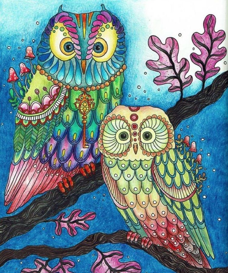 Owl Coloring Pages Already Colored Owl Coloring Pages, Owl Artwork, Owl  Painting