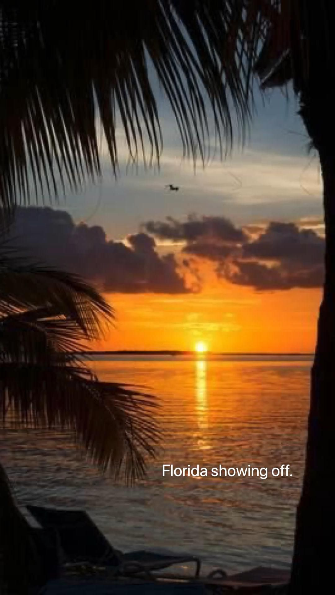 Florida sunsets. Florida living. Country living. Beach life. Florida. Florida beach