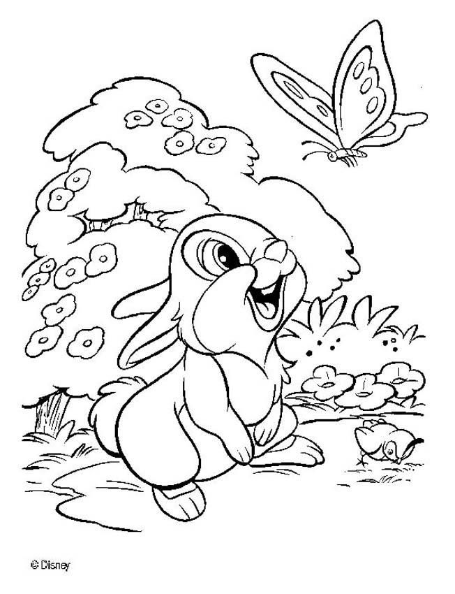 Disney Bambi Klopfer Coloring Pages Disney Malvorlagen