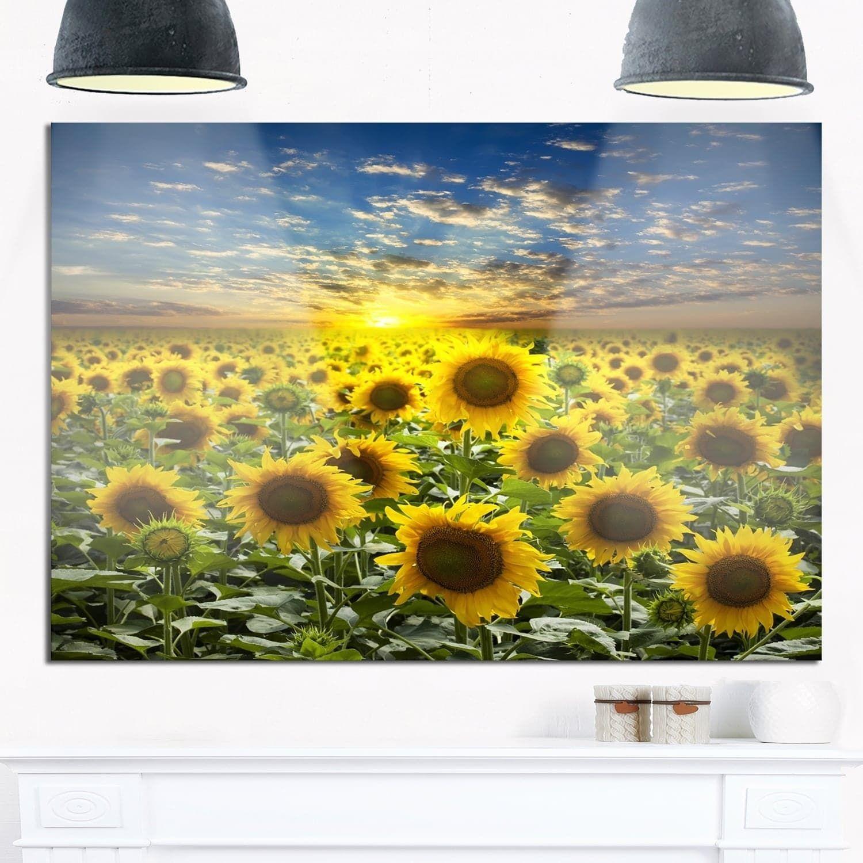 Field of Blooming Sunflowers - Flower Glossy Metal Wall Art ...