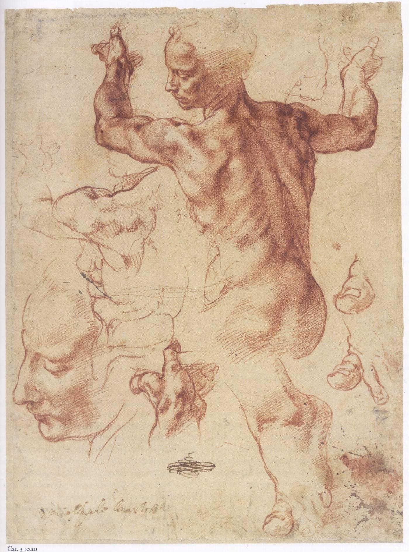 anatomische schets   Michelangelo Buonarotti   Pinterest   Figuren ...